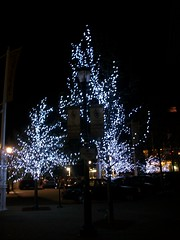 100_3560 (Mindsay Mohan) Tags: trees water lights waterfront front yonkers yonkersny pierview