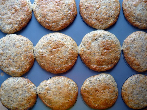 Lemon Poppy Seed Teacakes