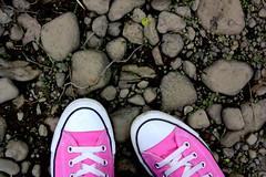Oh pink shoes (Nicoliosis!) Tags: pink shoes rocks converse chucks chucktaylor