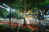 The Magical Tree in Orchard, Singapore (Filan) Tags: marina singapore kiss orchard nikond70s hs singapura ion straightoutofthecamera filan tangsplaza sooc nopp isetann straightoutofcamera orchardsingapore filanthaddeusventic hobbyshots messcontest1 filannikon filand3 filantography nikonfilan filanthography nikonianfilan iamfilan