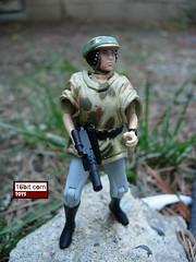 Endor Leia
