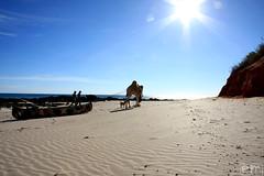 In viaggio... (Elena Martinello) Tags: life travel wild sun art beach photo bush tour north australia western land getty aboriginal sole terra viaggio spiaggia broome indiano oceano bosco nel cammello aborigena quondong gettyimagesitalyq1 gettyimagesitalyq2 gettyimagesitalyq3