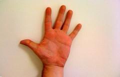 Five (torresburriel) Tags: hand five mano cinco