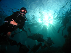 Canice & Random Divers against the sun