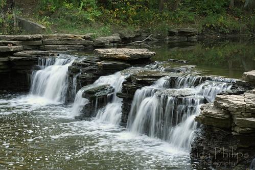 Waterfall Glen Oct2009 004 web warmer