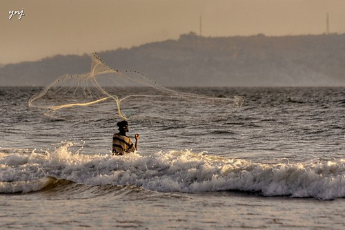 Catching Fish on the Tide by Yogendra174