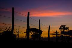 2014.0069 (Adriano Aquino) Tags: sunset pordosol sky cloud sun nature clouds rural fence landscape natureza country paisagem nuvens campo cerca nuvem ceu brasilemimagens adrianoaquino wwwadrianoaquinocom