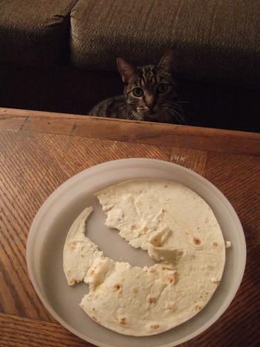 Tortilla Stealer!