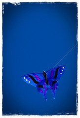 Butterfly Kite...To Jovanna (Srch) Tags: california kite beach butterfly sandiego playa oceanbeach mariposa kitefestival cometa flickrtour nikond60 bcflickr oceanbeachkitefestival