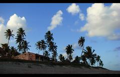 (Marcia Salviato) Tags: brazil color tourism praia beach brasil cores twilight holidays br marcia conde turismo ferias paraiba entardecer crepúsculo h9 coqueirinhobeach salviato marciasalviato paraibabr condepb praiadecoquerinho