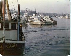 Packing Out (bayrat) Tags: brooklyn trawler happys sheepsheadbay gerritsenbeach dragger commercialboat shellbankcreek