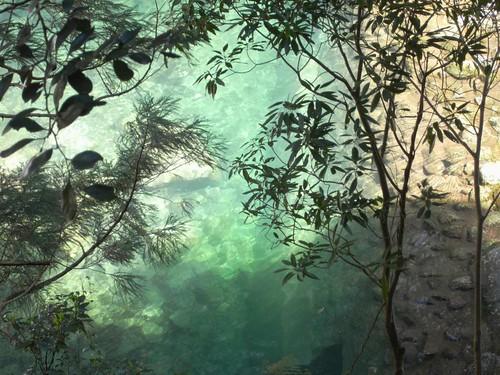 那智の滝(飛瀧神社)@和歌山-05