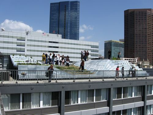 Alexis Rochass SynthE green roof. (All photos Matt Chaban)