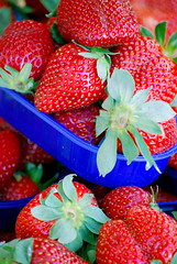 """Simplicity makes me happy."" (Majorlight) Tags: blue red italy inspiration color green love nature beauty fruit colorful italia market strawberries happiness lick fresh simplicity sicily thursday mercato sicilia wholesome fragole giovedi majorlight extraordinarythings"
