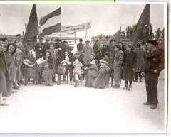 Holocaust Jewish Concentration Camp Births scan0066 (stephaniecomfort) Tags: germany holocaust jewish 1945 concentrationcamp births liberated mothersbabies