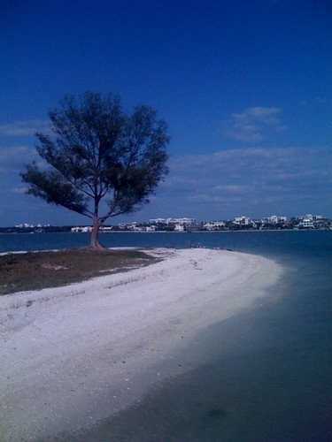 Shell Island in Clearwater, Florida