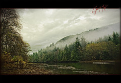 Echoes!... BC Canada (CyrusMafi) Tags: world autumn our lake canada tree green fall water colors beauty leaves yellow fog vancouver clouds wow landscape leaf moss britishcolumbia secret group columbia harmony british 100 fabulous comment scapes gmt in beautysecret supershot 100comments abigfave worldbest platinumphoto flickrbest flickraward commentgroup ysplix onlythebestare goldstaraward top20brown photographersgonewild 100comment colorsinourworld photoartbloggroup moodcreations realgem cyrusmafi cyrushmafi