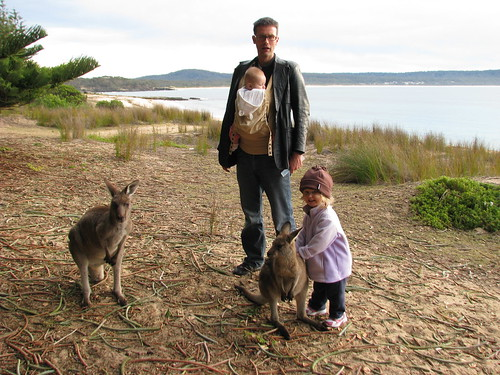 Family, with kangaroos