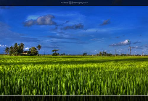 3632209223 47cdfe45e3 - Bajet Kedah 2010