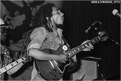 Bob Marley Hollywood 1975