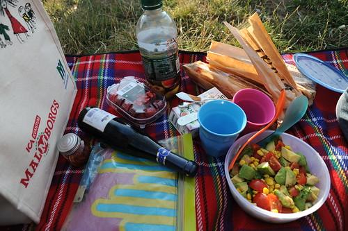 今日のピクニック