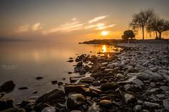 Lutry (Jean-Marc Bruchez) Tags: trees sunset lake landscape geneva stones leman waterscape lutry switzerlans vision:mountain=0625 vision:sunset=0943 vision:outdoor=092 vision:clouds=0969 vision:sky=0956 vision:ocean=0853