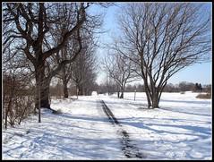 Snow walk (JeffKWW) Tags: nyc ny si statenisland mountloretto