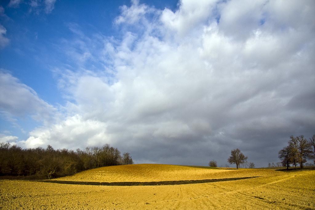 Monferrato Countryside #1