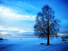 Winter at Lake Vänern in Sweden #1