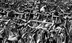 Wheels within wheels. (trininick) Tags: holland wheels bicycles flickrchallengegroup flickrchallengewinner