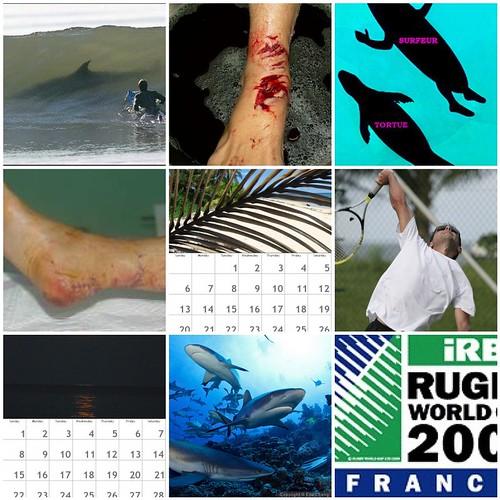 Les photos les plus vues cette semaine : 9 - 15 mars 2009