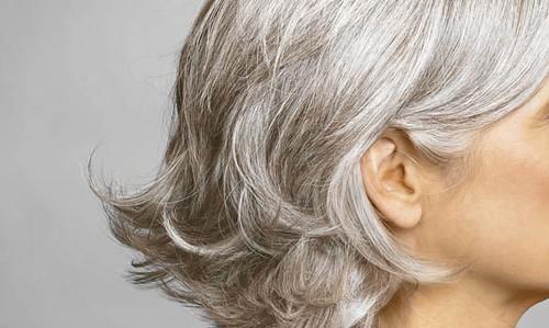 gray style 5