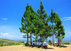blue sky (FrozenBlizzard (I need to get a PRO Account soon)) Tags: blue sky mountain car canon landscape bluesky palm palmtrees overlook overlooking 1740mm eos450d