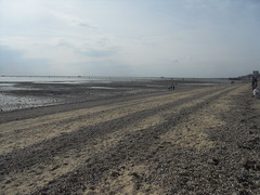 The Least Attractive Beach In The World? (Ceiridwen) Tags: sea beach mud empty ugly horrible southend peir