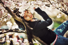 Sakura (SemiCharmedLife ()) Tags: portrait people tree girl bokeh blossoms sakura cherryblossoms inatree nationalcherryblossomfestival