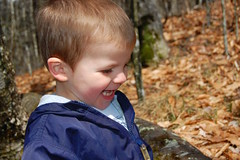 Harrison at Newfound Gap
