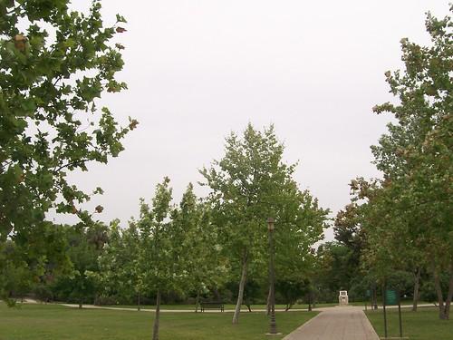 san pedro park