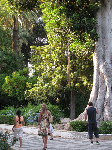 Seville Park
