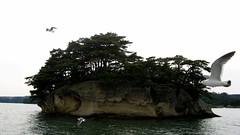 IMG_3342 (foreverstudent) Tags: japan matsushima miyagi