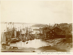 Royal visit in Lysekil in 1883, Sweden (Swedish National Heritage Board) Tags: port boats harbor yachts riksantikvarieämbetet theswedishnationalheritageboard
