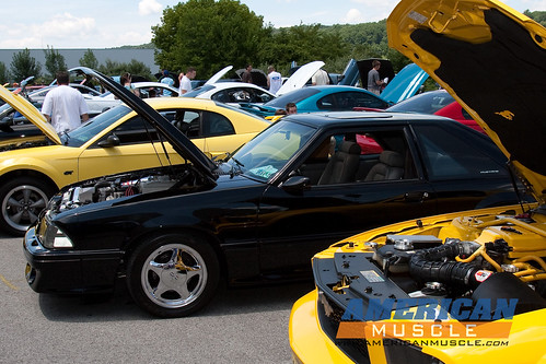 am-carshow09-nm-184