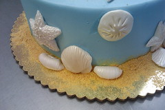 Sea cake 03