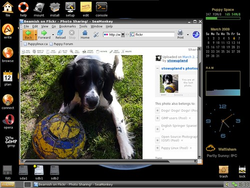puppy linux webserver