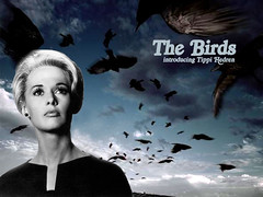 Tippi Hedren (Diva 2) (Lords of Dames) Tags: birds hitchcock tippi hedren