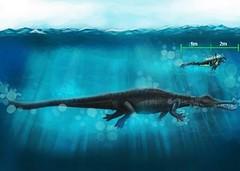 gryposuchus de otra especie