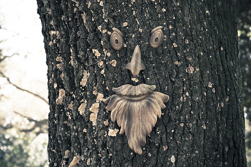 """I am the Lorax, I speak for the trees, for the trees have no tongues."""