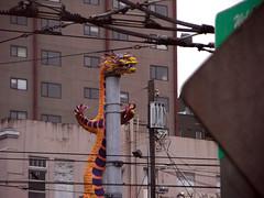 Seattle dragon
