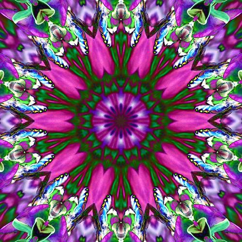 Kaleidoscope K-Play T21-a
