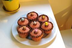 Strawberry Cupcakes (bunbunlife) Tags: friends animal easter dessert zoo cupcakes strawberry chocolate kawaii bento frosting ichigo