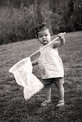 catch me if you can! (Kelly West Mars) Tags: portrait blackandwhite bw baby cute girl field vintage fun outside outdoors spring toddler child naturallight insects bugs april firefly richmondva whimsical fireflies multiracial mixedrace butterflynet 14months lightningbug warmweather nikond80